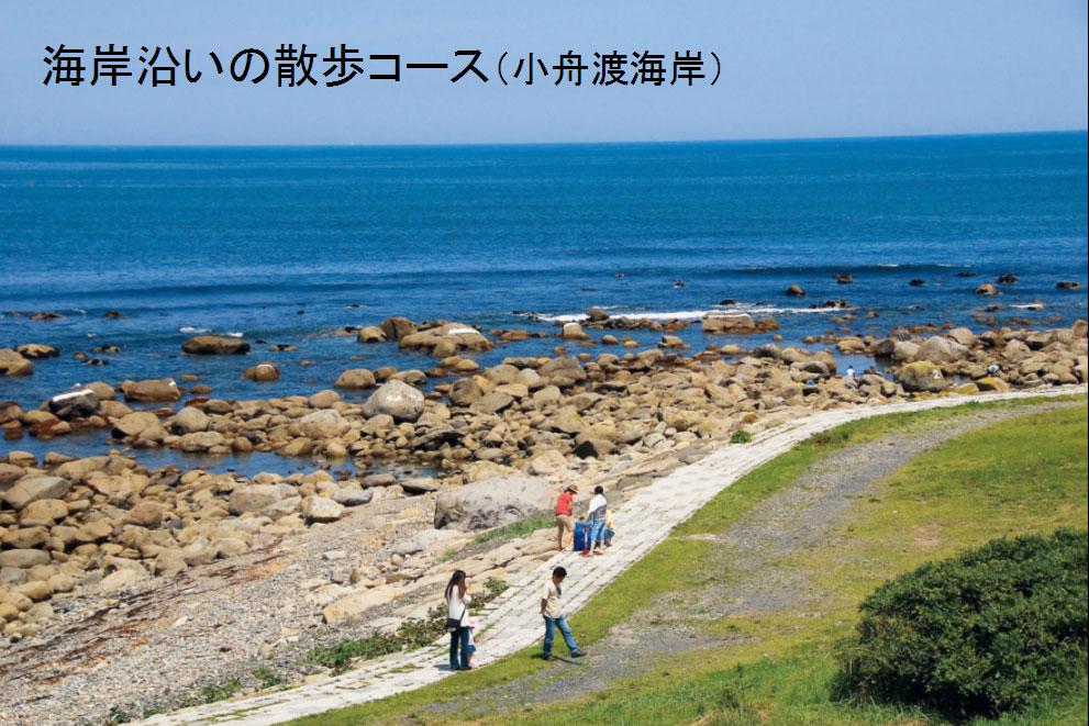 海岸沿いの散歩コース(小舟渡海岸)