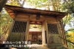 町のルーツ寺下観音  (仁王門から見た観音堂)