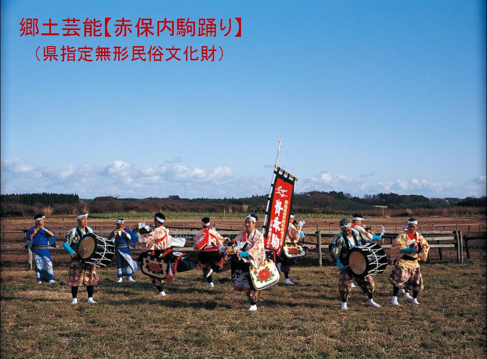 郷土芸能【赤保内駒踊り】  (県指定無形民俗文化財)