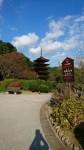 五重塔は山口駅近くの瑠璃光寺にある重要文化財です