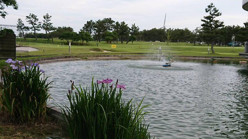 若洲ゴルフ場です②
